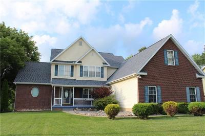 Flint Single Family Home For Sale: 5241 E Potter Rd