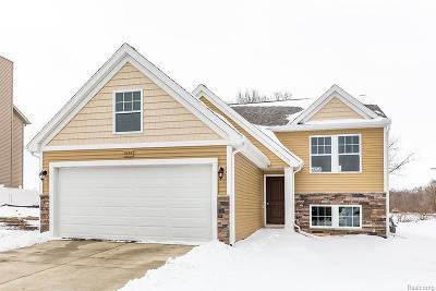 Flushing Single Family Home For Sale: 3117 Stratford Ln