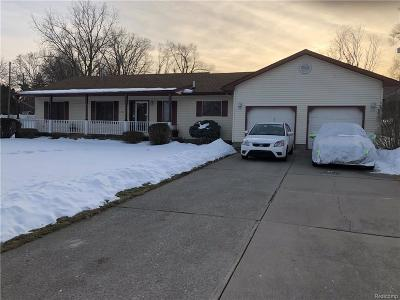Flint Single Family Home For Sale: 4141 Townview Dr