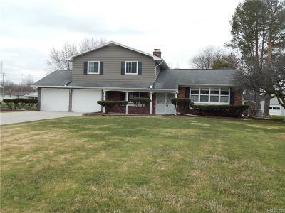 Flint Single Family Home For Sale: 6123 Lancaster Dr