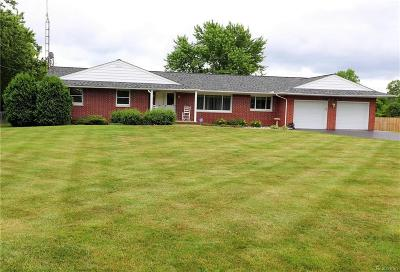 Flint Single Family Home For Sale: 6137 W Court St