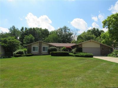 Flint Single Family Home For Sale: 1251 Mill Creek Rd