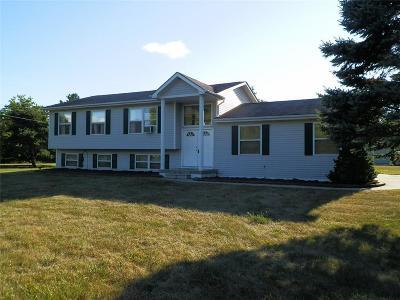 Flushing Single Family Home For Sale: 6147 Turner Rd