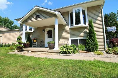 Flushing Single Family Home For Sale: 337 Windy Blf