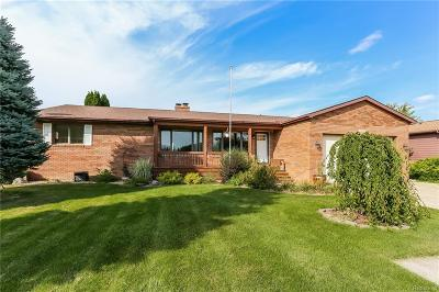 Flushing Single Family Home For Sale: 8180 W Potter Rd