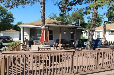 Flint Single Family Home For Sale: 3385 N Genesee Rd
