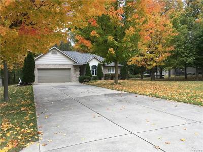 Flint Single Family Home For Sale: 6170 Beecher Rd