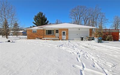 Flushing Single Family Home For Sale: 8261 N Elms Rd