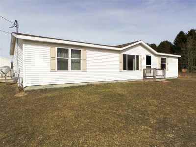 Montrose Single Family Home For Sale: 12300 Lake Rd