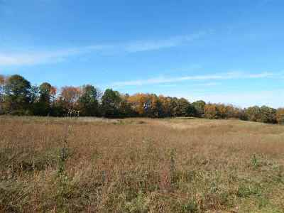 Jackson MI Residential Lots & Land For Sale: $98,900