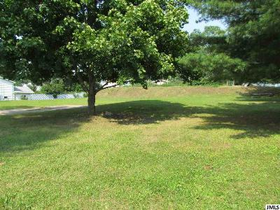 Jackson County Residential Lots & Land For Sale: 411 Bagg Ave