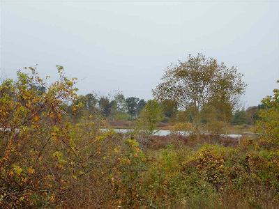 Grass Lake MI Residential Lots & Land For Sale: $367,500