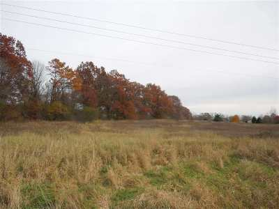 Jackson MI Residential Lots & Land For Sale: $64,880