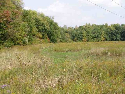 Jackson MI Residential Lots & Land For Sale: $399,000