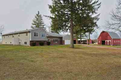 Grass Lake MI Single Family Home Contingent: $450,000