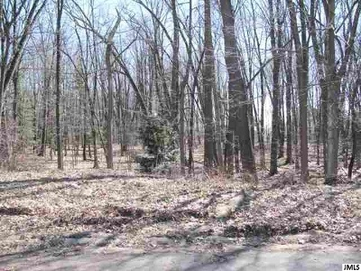 Jackson MI Commercial Lots & Land For Sale: $99,000