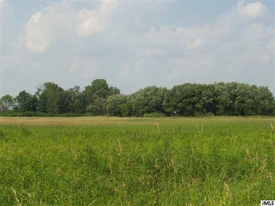 Chelsea MI Residential Lots & Land For Sale: $75,000