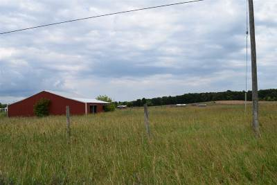 Cement City MI Residential Lots & Land For Sale: $58,000