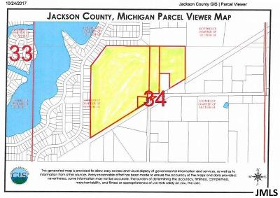 Brooklyn MI Residential Lots & Land For Sale: $159,000