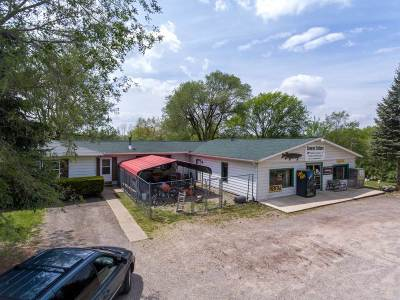 Commercial/Industrial For Sale: 10591 E Chicago