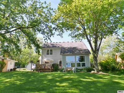 Lenawee County Single Family Home For Sale: 44 S Shore Dr