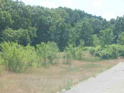 Jackson MI Residential Lots & Land For Sale: $214,500