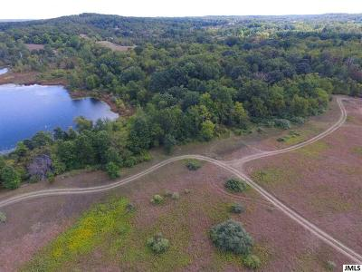 Brooklyn MI Residential Lots & Land For Sale: $199,000
