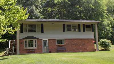 Single Family Home For Sale: 5499 Welch Lake Rd
