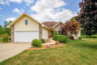 Single Family Home For Sale: 1041 Engelhardt Strasse