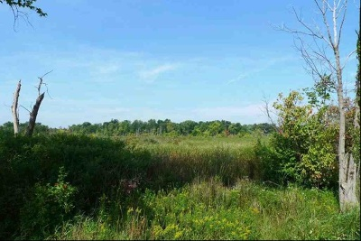 Brooklyn MI Residential Lots & Land For Sale: $169,900