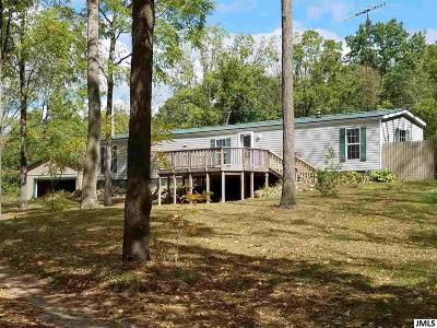 Hillsdale County Single Family Home For Sale: 10811 Pope Rd