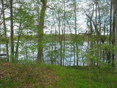 Residential Lots & Land For Sale: Lot 211 Westshore Dr