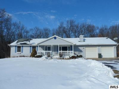 Grass Lake MI Single Family Home For Sale: $365,000