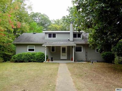 Jackson MI Single Family Home For Sale: $219,900