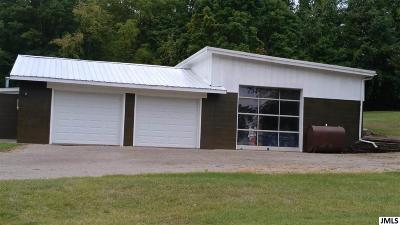 Hillsdale County Commercial/Industrial For Sale: 422 Harley