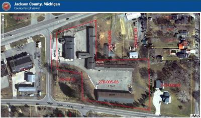 Jackson County Commercial/Industrial For Sale: 3505 Ann Arbor Rd