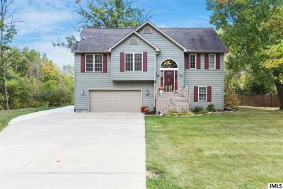 Spring Arbor MI Single Family Home Contingent - Financing: $269,900