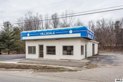 Hillsdale County Commercial/Industrial For Sale: 503 E Chicago Rd