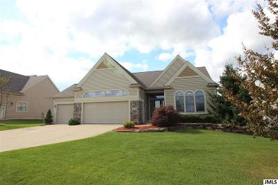Grass Lake MI Single Family Home Contingent: $309,000