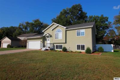 Jackson Single Family Home For Sale: 1322 Catsyl