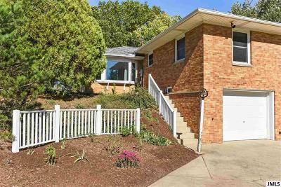 Brooklyn MI Single Family Home For Sale: $330,000