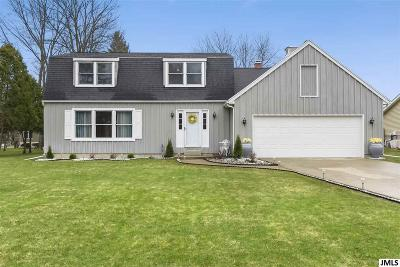 Jackson MI Single Family Home For Sale: $190,000