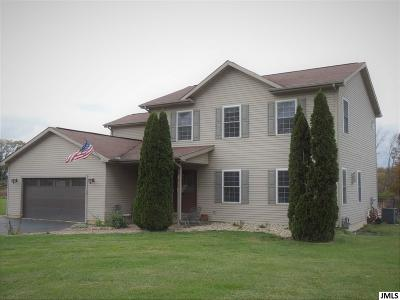 Spring Arbor Single Family Home For Sale: 10580 King Rd