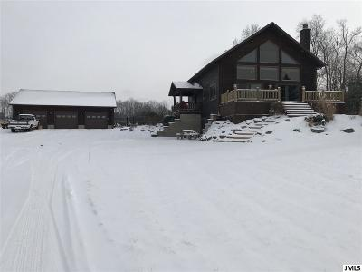 Hillsdale County Single Family Home For Sale: 4665 Homer Rd