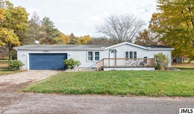 Single Family Home For Sale: 7223 Brills Lake Rd