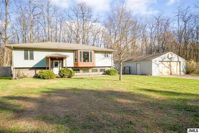 Jackson Single Family Home For Sale: 7745 Napoleon Rd