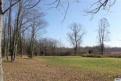 Jackson MI Residential Lots & Land For Sale: $429,000