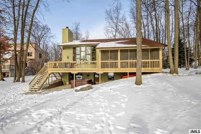 Onsted MI Single Family Home For Sale: $359,900