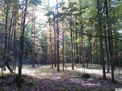 Jackson MI Residential Lots & Land For Sale: $174,900