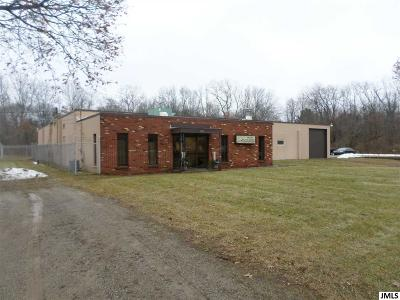 Jackson MI Commercial/Industrial For Sale: $1,300,000